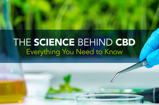 CBD: A Doctor's Guide